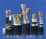 HJVV 10X2X0.5 通信电缆 市内通信电缆