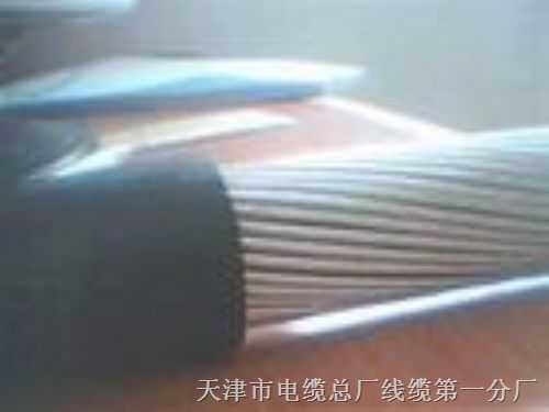 交联聚乙烯绝缘 电力电缆 YJV32