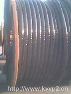 阻燃电力电缆(ZRYJV22