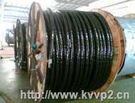 铠装电力电缆-YJV32