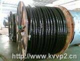 鎧裝電力電纜-YJV32