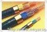 电子计算机用屏蔽电缆 DJYJV(R)P