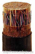 低烟无卤阻燃通信电缆WDZ-HYAT53/WDZ-HYAT23