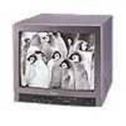"""14""""黑白视频监视器 SC-914"""