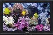 邁威32英寸專業級LCD監視器