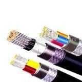 聚氯乙烯絕緣護套耐火電力電纜 (NH-VV/VV22)