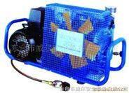 东台威尔 压缩空气填充泵