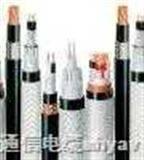 耐高温铠装电缆;DJFPVPR22;DJFPVRP22