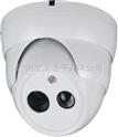 广州阵列灯红外摄像机,广州天河区防盗监控系统,广州工厂监控系统,广州写字楼防盗监控系统