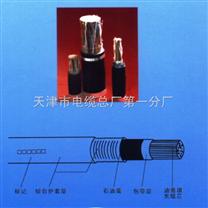 程控交换机电缆HCJVV 32*2*0.4 16*2*0.4