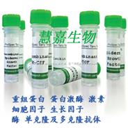 PSP94 Human/重组人β-微精液蛋白 PSP94 Human