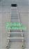 铝合金绳梯|登乘梯(船用救生绳梯)