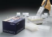 BIM试剂盒,人褪黑素(MT)ELISA检测试剂盒
