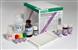 大鼠补体因子H(CFH)ELISA试剂盒