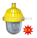 BPC8720防爆平台灯,大浪电器防爆灯,大浪防爆灯