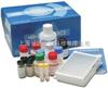 小鼠α谷胱甘肽S转移酶(α-GST)ELISA试剂盒