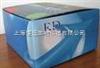 豚鼠过氧化脂质/乳过氧化物酶(LPO)ELISA试剂盒