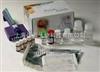 兔子促黄体激素(LH)ELISA试剂盒