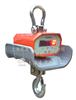 OCS-YJOCS-YJ计量检定所指定4吨直视吊秤